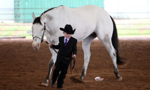 7 Jnr & Ben Showmanship NSW 11